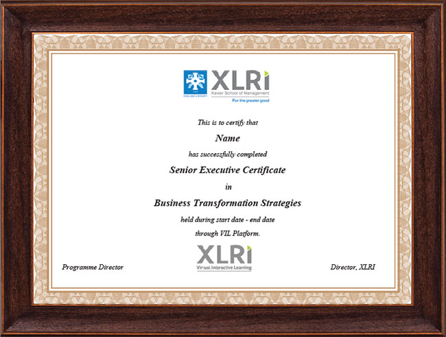 Senior Executive Certificate in Business Transformation Strategies - Certificate