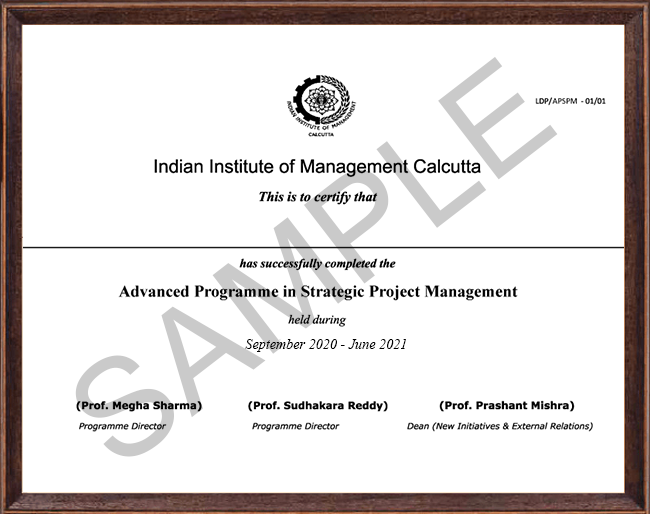 Advanced Programme in Strategic Project Management - Certificate